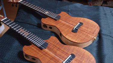 Fusion 360とCNCを活用して今までになかった発想のウクレレやギターを作製